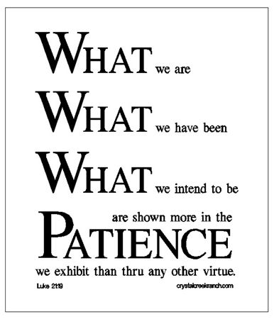 Patience by DWRowan. One of my favorite old sayings. Wise Sayings from